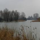 Brudy z Miasteczka Wilanów zalewają Jezioro Powsinkowskie