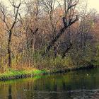 Kanał Kamionkowski – pływające zwłoki